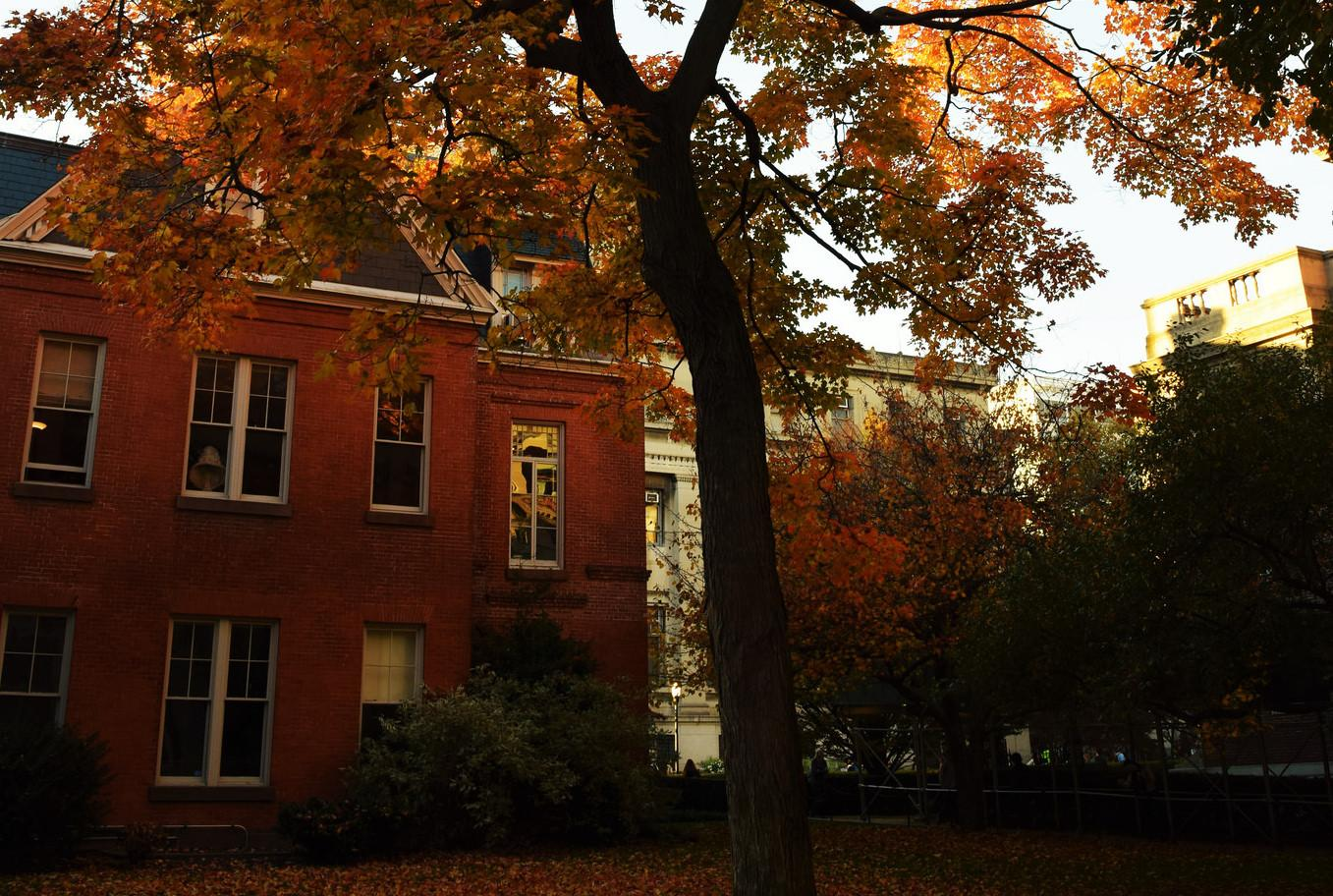 Maison francaise with fall foliage at sunset